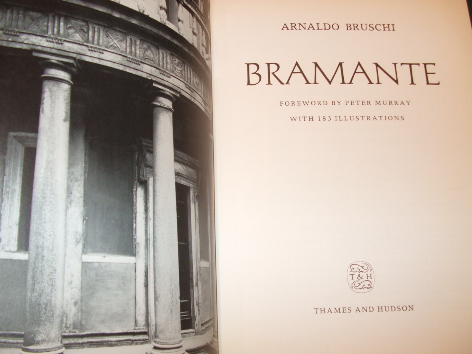 Image for Bramante