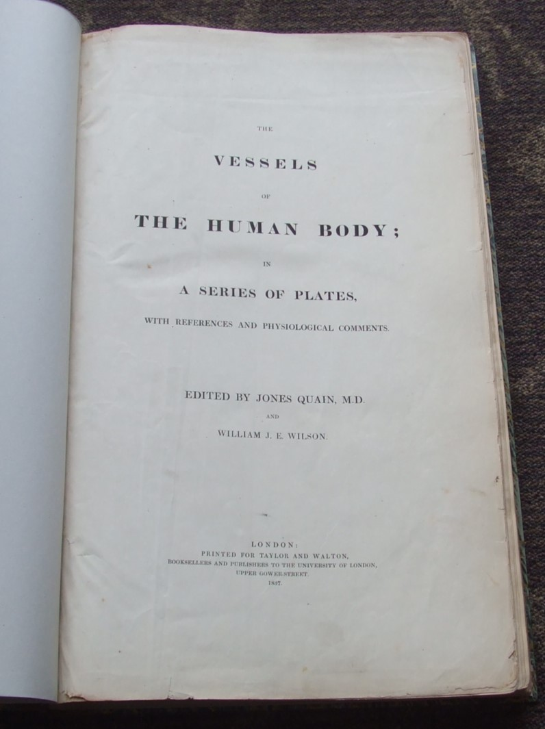 Image for The vessels of the human body : in a series of plates, with references and physiological Comments