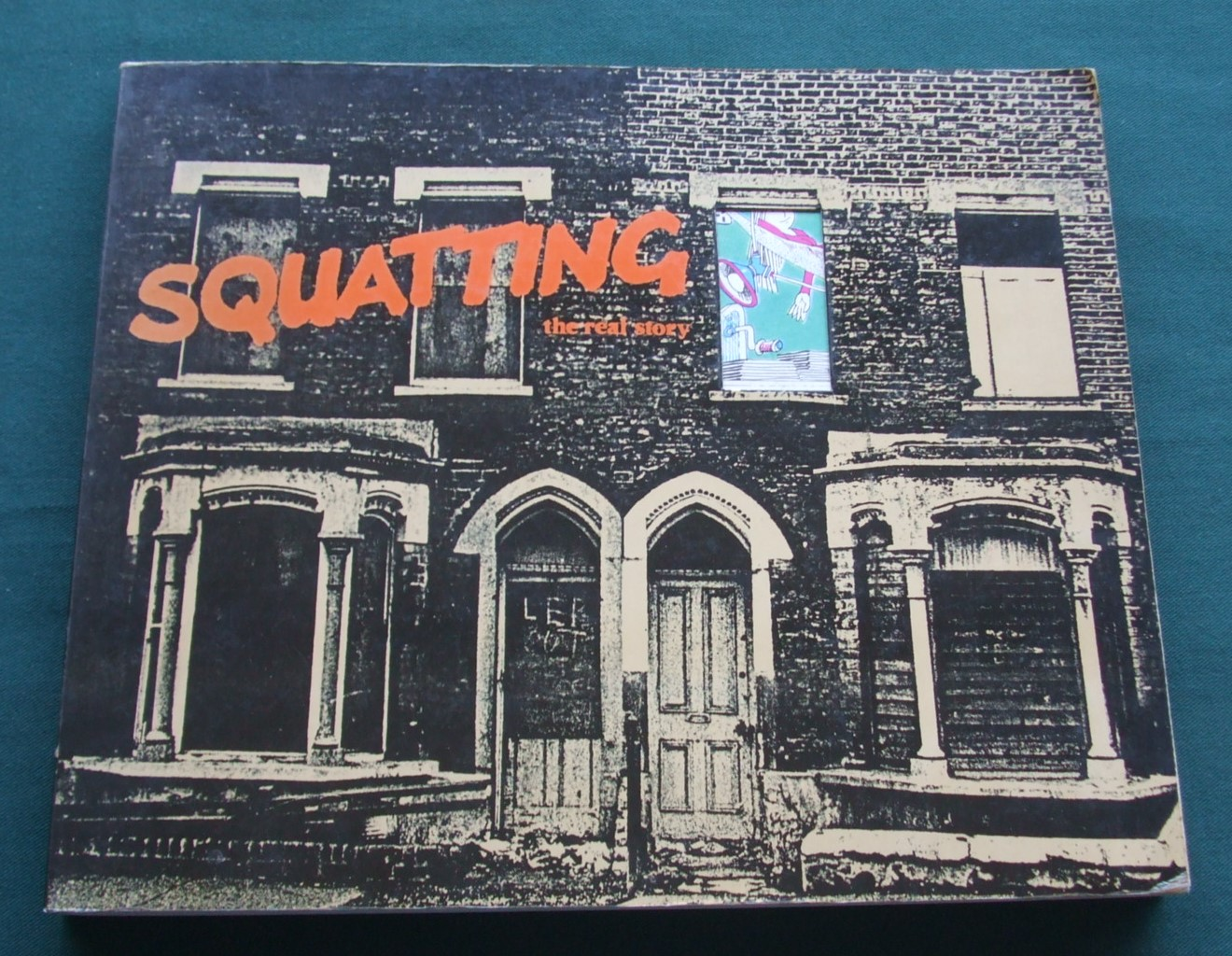 Image for Squatting: The Real Story
